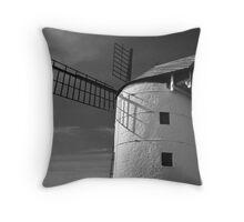 Ashton Windmill 13 Throw Pillow