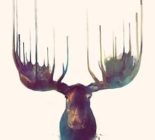 Moose by Amy Hamilton