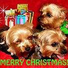 Merry Christmas Yorkies by WildestArt