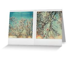 sunny magnolia Greeting Card
