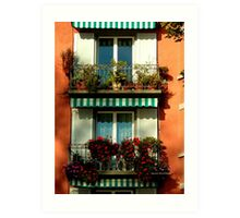 Pretty Swiss Window Box Art Print