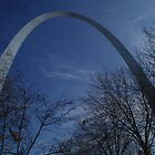 Arch in St.Louis by Johanna  Rutter
