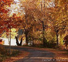 A Beautyful Day in The Autumn...  by Maj-Britt Simble