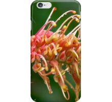 Apricot Grevillea iPhone Case/Skin