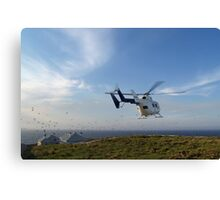 Helicopter Island Canvas Print