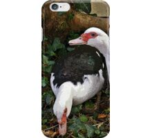 Two Muscovies A iPhone Case/Skin