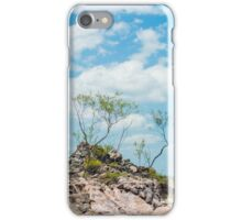 Litchfield Lookout iPhone Case/Skin