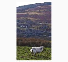 Welsh Sheep A Kids Clothes