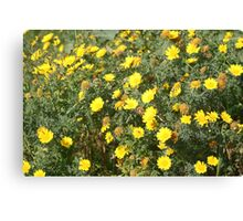 Lellux - yellow flower Canvas Print