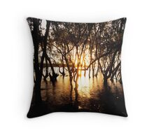 Wetland Sunset Throw Pillow