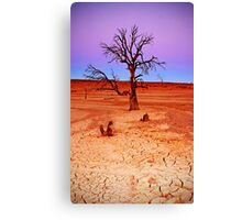 Beauty is ..... Canvas Print