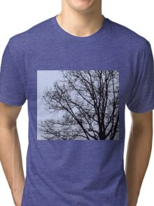 Fall Tree Silhouette Vector Blue Tri-blend T-Shirt