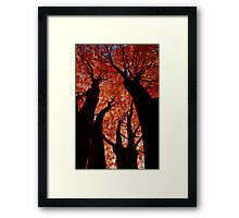 The Giants Framed Print