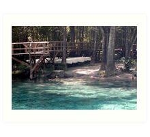 Canoes at Blue Springs Art Print