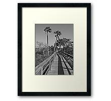Fence, Shadows & Palm Trees Framed Print