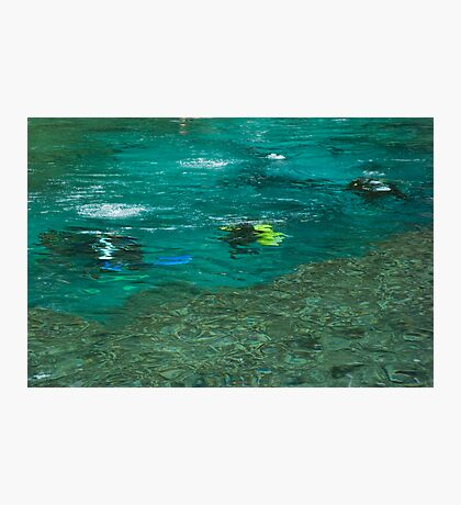 Divers in the Spring Photographic Print