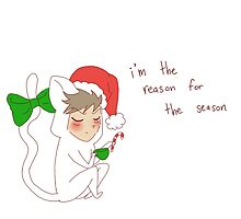 """""""reason for the season"""" weird cats by wade-ebooks"""