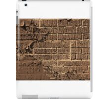 Textured red bricks wall digital art  iPad Case/Skin