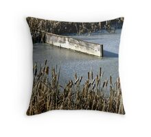 Ice, Rushes & Wood Throw Pillow