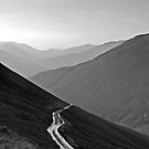 Winding Road by Anna Ridley