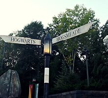 Hogwarts vs Hogsmeade  by StaceySteph