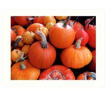 Pumpkins a'plenty Art Print