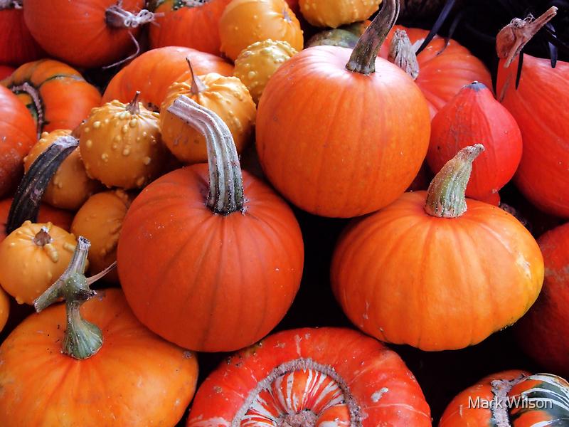 Pumpkins a'plenty by Mark Wilson