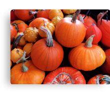 Pumpkins a'plenty Canvas Print