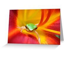 frog in daylilly Greeting Card