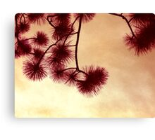 Orange Haze Canvas Print