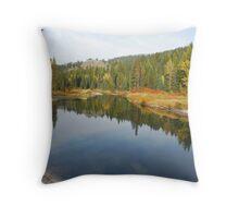 Upper Payette River  Idaho Throw Pillow