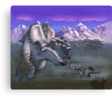An Albino at Sunset Canvas Print