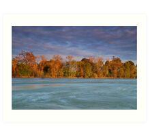 American River Art Print