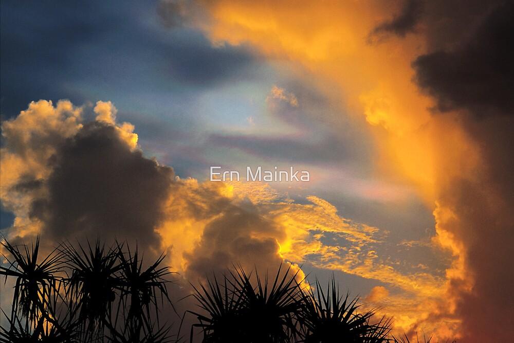 Tropical Iridescence, Darwin. by Ern Mainka