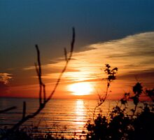 Sunset From Summerland November by Lexi