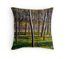 Silver Birches  Throw Pillow