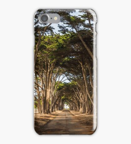 Cypress Trees, Point Reyes National Seashore iPhone Case/Skin