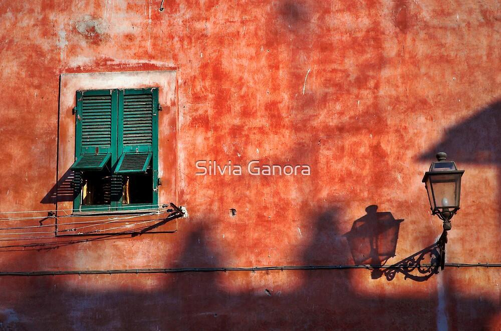 Italian window and streetlamp by Silvia Ganora