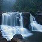 Blackwater Falls  by ThomasRBiggs