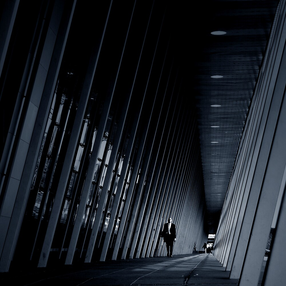 Straight Lines by Michelle Leong