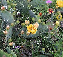 West Texas Flower Garden by Joe Hewitt