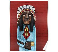 (Native) American Poster