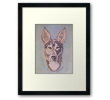 Dog Friend Framed Print