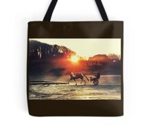 Pony and Trap at Bettystown beach Tote Bag