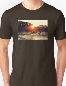 Pony and Trap at Bettystown beach T-Shirt