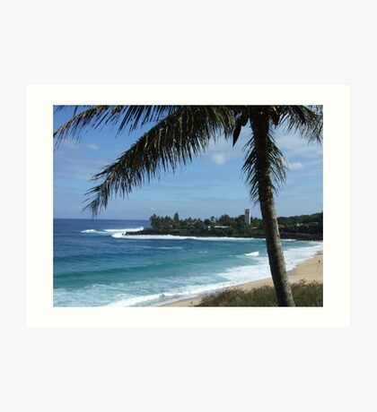 Hawaii Beach 14 Art Print