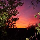 Tropical sunset.... in England :S by ibanezfrog