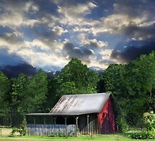 Little Overgrown Barn by pinkarmy25