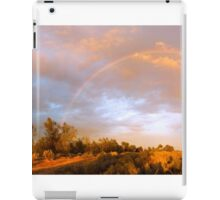 Sunrise Storm in the Outback iPad Case/Skin