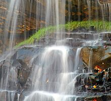 The Water is Falling by Jeff  Burns